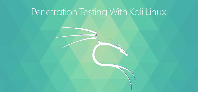 Penetration testing, Pen Testing, Kali, Linux, Security tools, Security testing. Penetration Testing: Why Kali Is a Great First Toolset