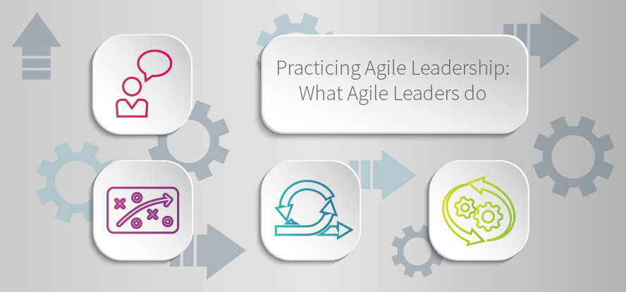 agile project management, agile leadership, leading an agile team, leadership, agile, creating experiments in software testing, software testing, agile testing strategies, TestRail.